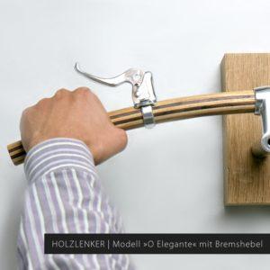 Holz Fahrradlenker gebogene Form | Modell »Wilhelm« aus der Fahrersicht mit Bremshebel »Dia-Compe MX-122«